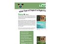 Triple S Brochure