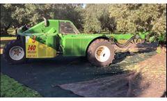 New Buggy Sicma F3 - Video
