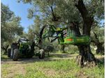 Harvester for olives, nuts, cherries, plums with trunk shaker (equipped with or without umbrella)