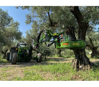 Sicma - Model TR80 - Harvester for olives, nuts, cherries, plums with trunk shaker (equipped with or without umbrella)