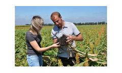 Agriculture Consulting Services