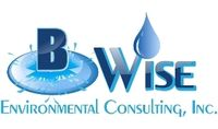 B Wise Environmental Consulting, Inc.