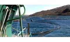 Aquaculture Project Management Services