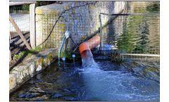 Splash - Elewater Aerator