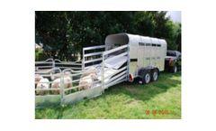 Graham Edwards - Model 6,3 FT - Livestock Trailers