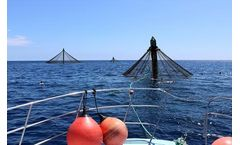 NOAA Selects Gulf of Mexico, Southern California as First Two Aquaculture Opportunity Areas