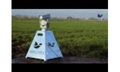 Agrilaser Autonomic - Automatic Laser Bird Deterrent Video