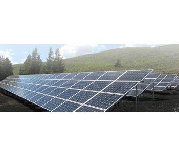Bird control solutions for the renewable energy industry - Energy - Renewable Energy-1