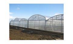 Model MCB 99 - Plastic Greenhouse