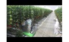 Micothon Amazone Greenhouse Spaying Robot 2013 Video