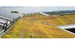 Extensive Green Roof Irrigation Services