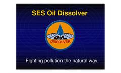 SES-Small presentation