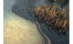 Oil Dissolver - Model SES - Property All Hydrocarbon Compounds