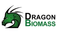 Dragon Heat Ltd