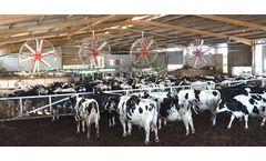 State fairs won`t press broiler industry`s bird flu luck