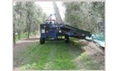 Dotan - Almonds and Olives Harvester