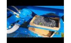 Air Blueberry Harvester Kokan 500s - Video
