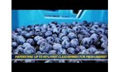 KOKAN500S - Blueberry (Eliot) harvesting presentation - Borstel, Germany (August, 2019) - Video