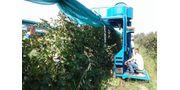Air Jet Berry Harvester