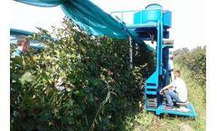 KOKAN - Air Jet Berry Harvester