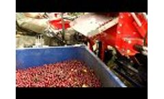 Cherry Harvester GACEK for Collecting Tree Fruits - Video