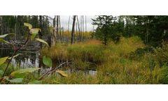 Alberta Biodiversity Conservation Chairs