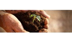 Microbial formulations for agriculture sector