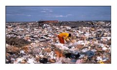 Toxic Petroleum Plastics