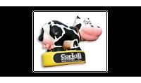 Corkill Systems Ltd (CSL)