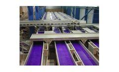 OptimarStette - Conveyor