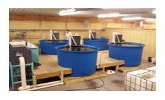 Global Aquatics - Model S-12 - Starter and Nursery System