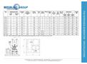 Besseling - Model PSA - Pressure Swing Adsorption Nitrogen Generator - Specifications