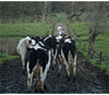 Air emissions of ammonia and methane from livestock operations: Valuation and policy options