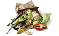 Waste compaction for the depackaging systems for food waste industry