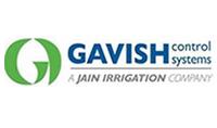 Gavish
