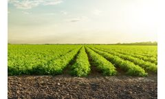 Micro-irrigation systems for open field