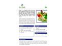 BioSet - Blood and Biohazardous Spill Powder