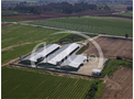 Broiler and Breeding Farms