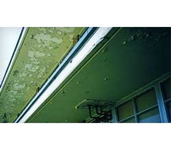 Asbestos and Lead Services