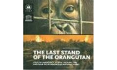 The Last Stand of the Orangutan : State of the Emergency : Illegal, Fire and Palm Oil in Indonesia