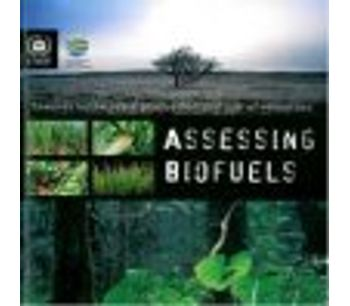 Towards sustainable production and use of resources: Assessing Biofuels