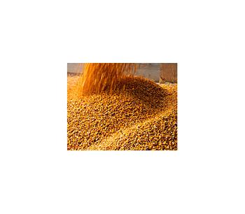Plan-A-Head - Grain Management Software Program, Grain Management System