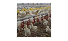 Sperotto - Poultry Nipple Drinking Systems
