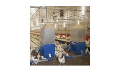Poultry Chain Feeding Systems