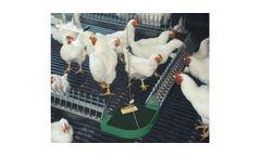VAL-CO - Flat Chain Feeding System