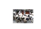 AutoRotor - Model Magnum 40/40-F - Rotary Milking Systems