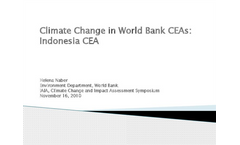 Climate Change and Country Environmental Analaysis: Case of Indonesia