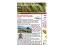 Breakfast Newsletter- Brochure