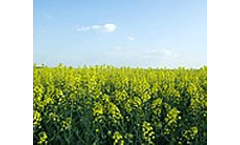 Biofuels markets in Sub-Saharan African can expect rapid growth, finds Frost & Sullivan