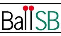 Ball SB Company